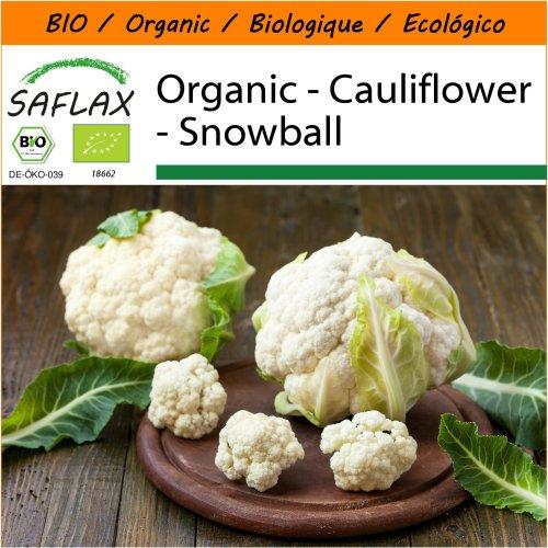 SAFLAX Garden in the Bag - Organic - Cauliflower - Snowball - 70 certified organic seeds  - Brassica