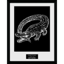 30 x 40cm Catfish & The Bottlemen Alligator Framed Collector Print