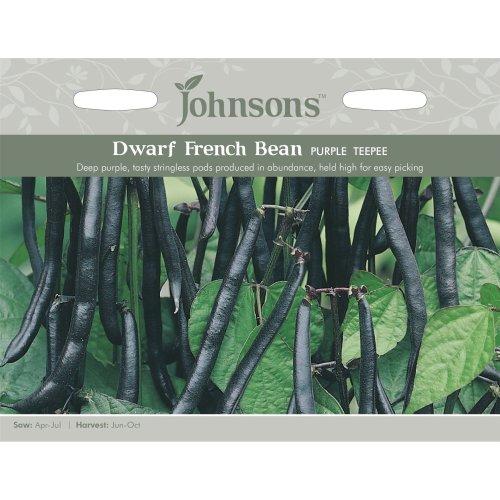 Johnsons Seeds - Pictorial Pack - Vegetable - Dwarf Bean Purple Teepee - 100 Seeds