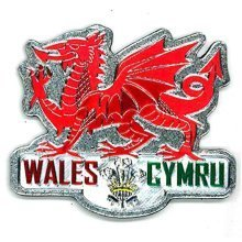 Welsh Wales Red Dragon Silver Foil Stamp Fridge Magnet Souvenir Gift Cymru