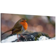Robin Red Breast Bird Panorama Canvas Print Wall Art Picture