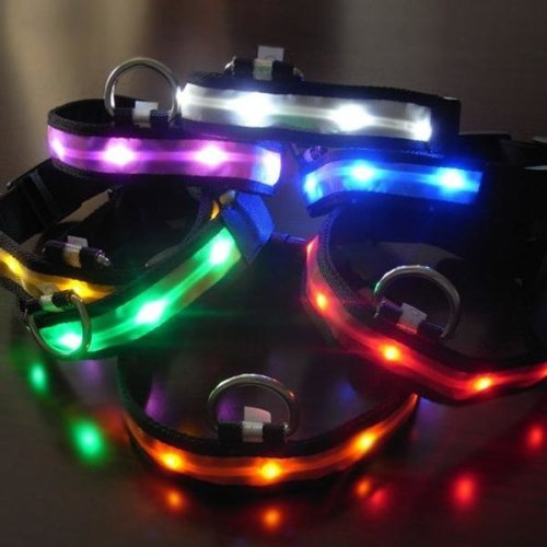 Size S Nylon Safety Flashing Glow Light LED Pet Dog Collar