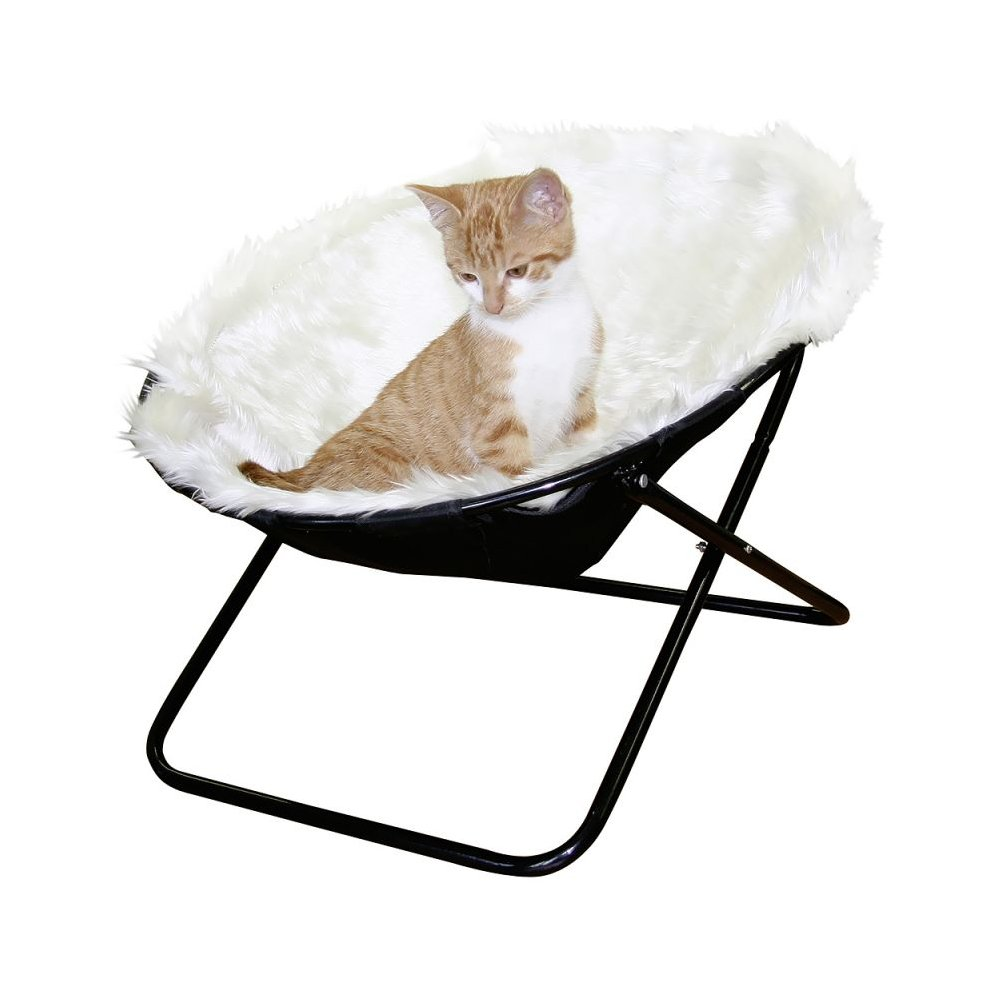 Magnificent Cat Window Seat Bed Sunny Dailytribune Chair Design For Home Dailytribuneorg