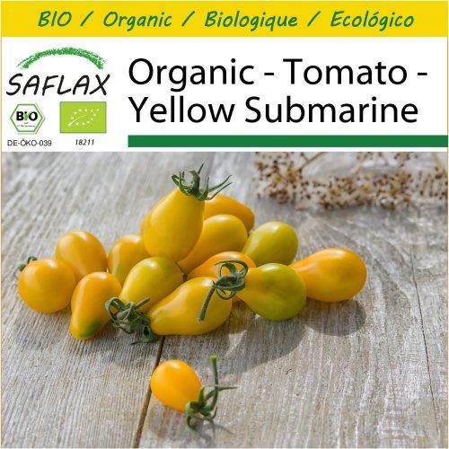 SAFLAX Potting Set - Organic - Tomato - Yellow Submarine - 10 certified organic seeds  - Solanum
