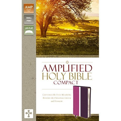 AMPLIFIED THINLINE BIBLE DUO DUO DK PLUM