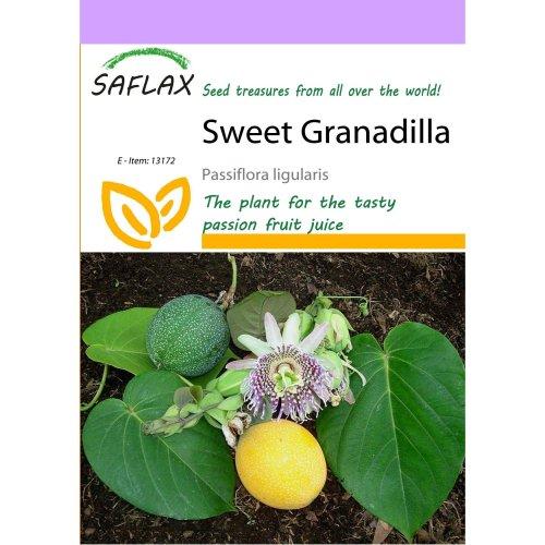 Saflax  - Sweet Granadilla - Passiflora Ligularis - 20 Seeds