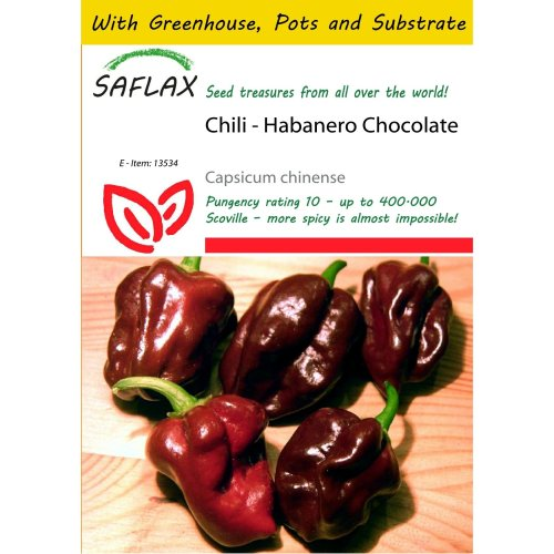 Saflax Potting Set - Chili - Habanero Chocolate - Capsicum Chinense - 10 Seeds - with Mini Greenhouse, Potting Substrate and 2 Pots