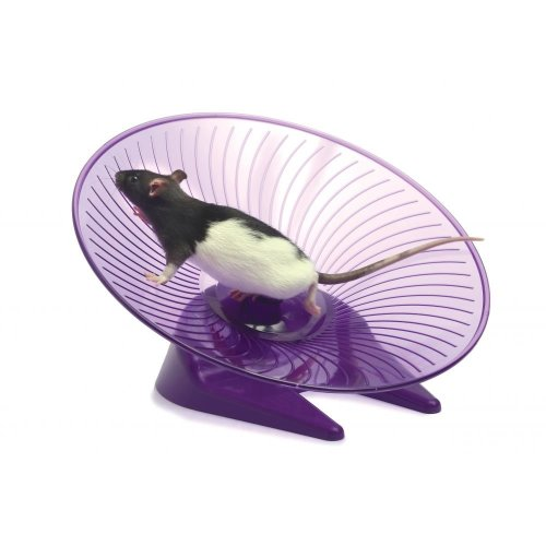 Small 'n' Furry Flying Saucer Wheel Large (12)