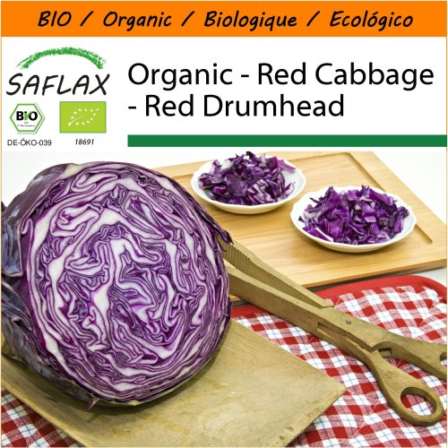 SAFLAX Garden in the Bag - Organic - Red Cabbage - Red Drumhead - 250 certified organic seeds  - Brassica