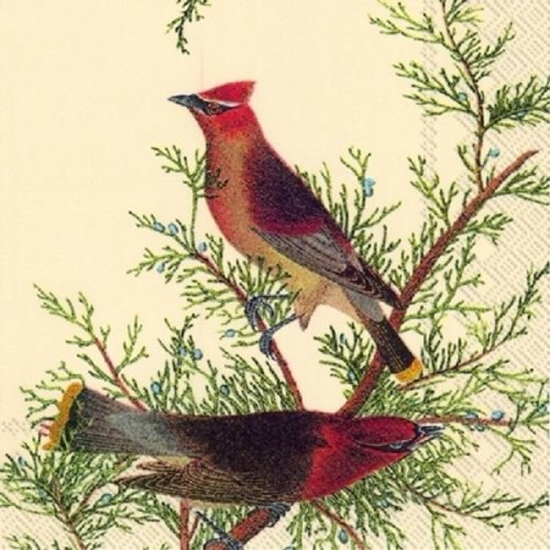4 x Paper Napkins - Cedar Cardinals - Ideal for Decoupage / Napkin Art