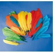 Pbx2470046 - Playbox - Indian Feathers (5 Colours) - 15 Cm - 120 Pcs