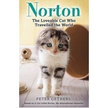 Norton, the Loveable Cat Who Travelled the World