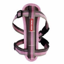 EZY-DOG CHESTPLATE HARNESS  (CANDY STRIPE)