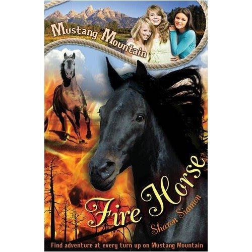 Fire Horse (mustang Mountain)
