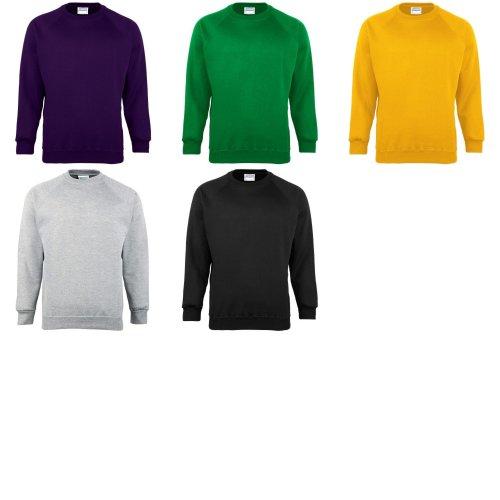 Maddins Kids Unisex Coloursure Crew Neck Sweatshirt / Schoolwear (Pack of 2)