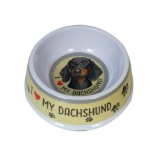 Smooth Haired Dachshund Dog Bowl