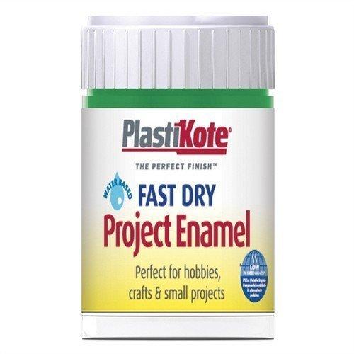 Plastikote B9w 59ml Enamel Paint Bottle - Garden Green - Dry Fast B9 Brush -  plastikote garden green 59ml enamel dry fast bottle b9 paint brush