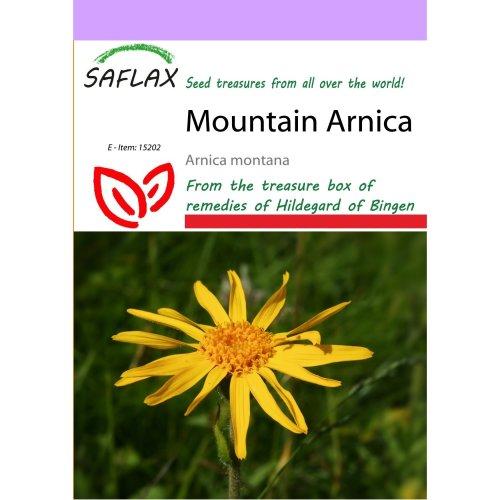 Saflax  - Mountain Arnica - Arnica Montana - 40 Seeds